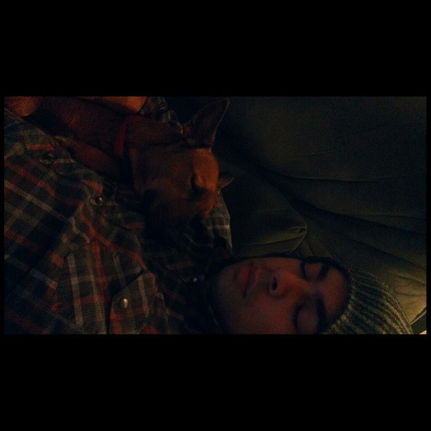 Dutches and I having a #sleep What can I say? I get all the #bitches . #cute #puppy #nap #snugs #instacute