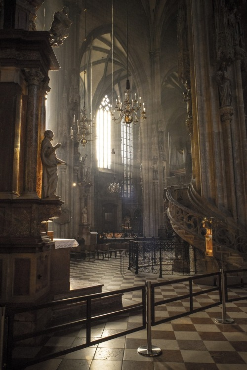 ancient-serpent:  Vienna Cathedral, Austria