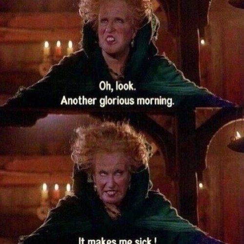 Me every morning ☺🌝
