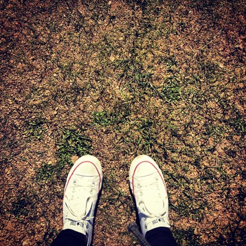 #whereistand #iceland #grass #green