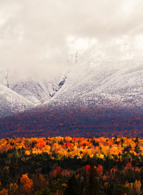 free-wilderness:  jugda: Autumn Variations (by diamir8000)