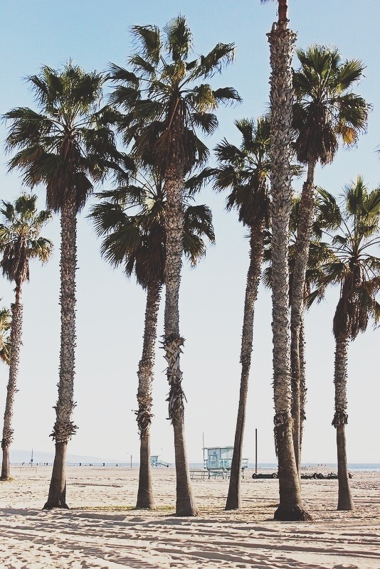 amandafiske:  Santa Monica on Flickr.