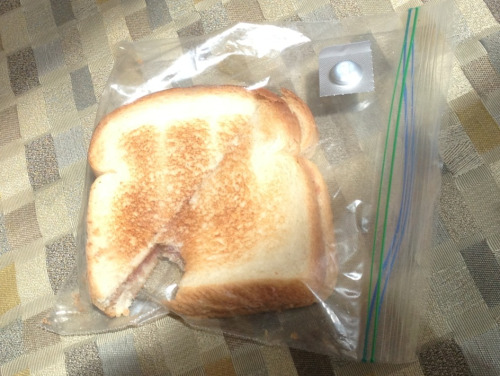 I have the best roommate ever! She brings me sandwich and medicine when I'm sick. Yum!