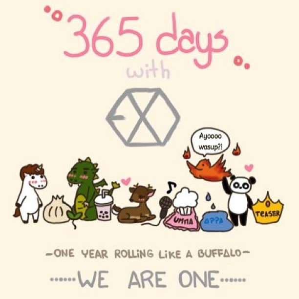 Only EXOtics can relate. :3 👍💗🇰🇷 #kpop #exo #exotics