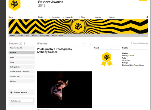 I feel so happy to see my work on D&AD site.
