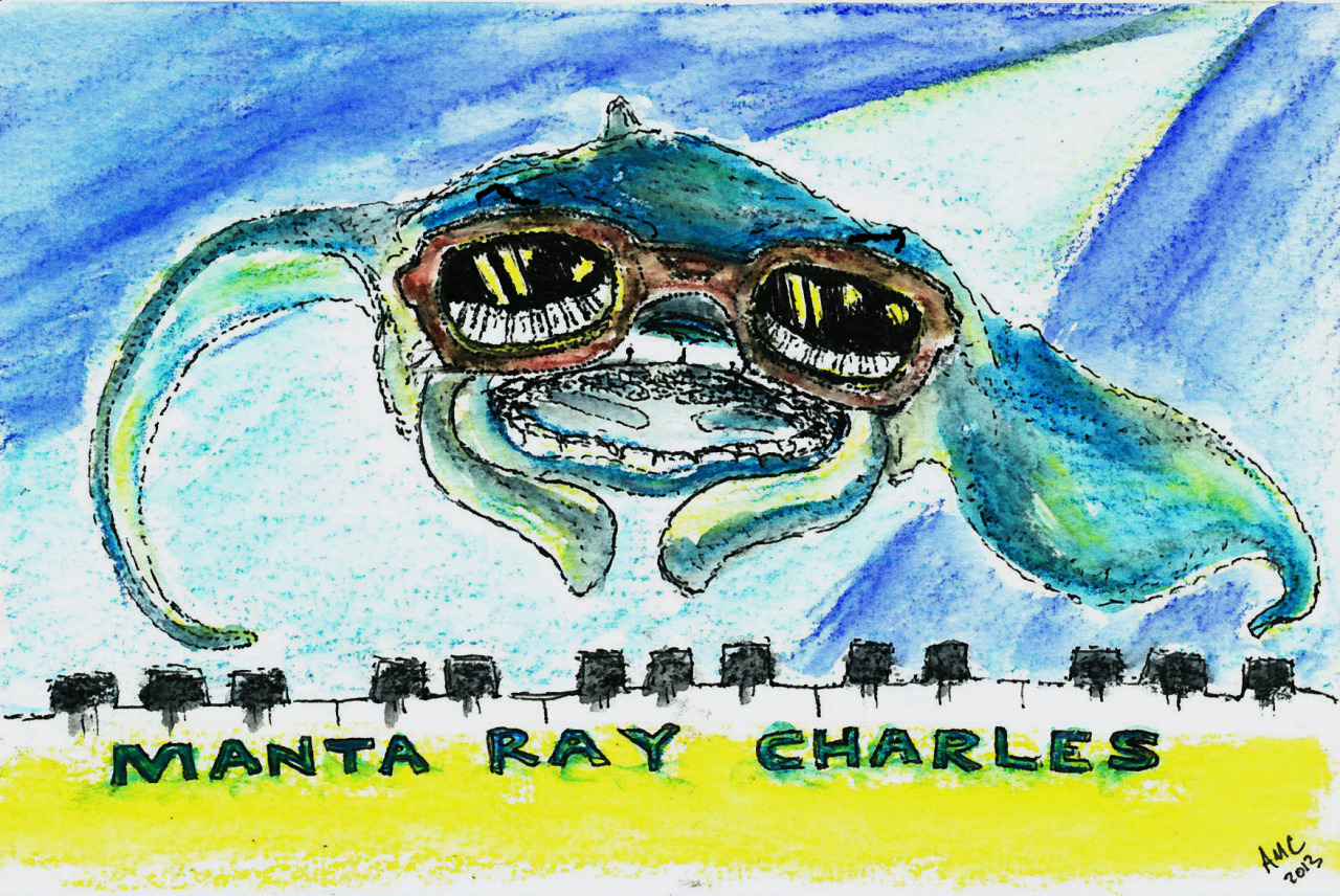 Manta Ray Charles (Ray Charles - What'd I Say (the most played song on my iPod))