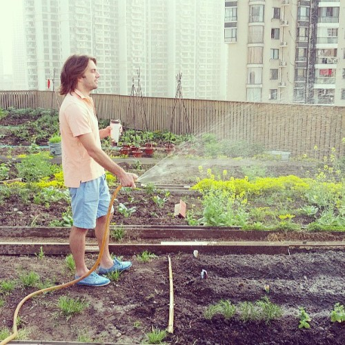 Urban Farmer Joe waters the crops. (at Anken Green)