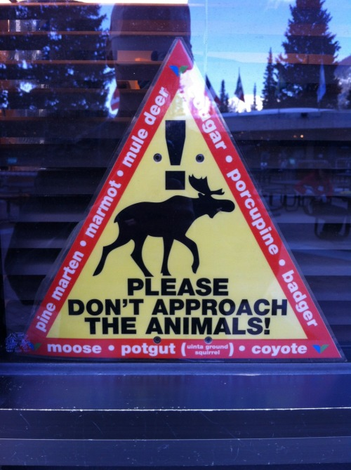 "Warning sign at Snowbird, Utah  ""Please don't approach the animals!"" Pine Marten Marmot Mule Deer Cougar Porcupine  Badger Moose Potgut (Uinta Ground Squirrel) Coyote"
