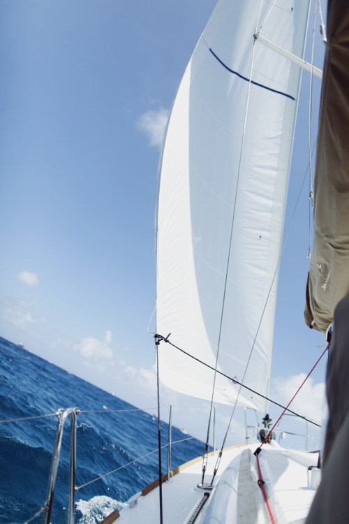 jamesnord:  One of the best views is looking at a full sail and a clear day