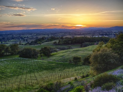 lensblr-network:  Sonoma Sunset by south-bird.tumblr.com