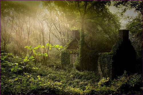 Ancient House, Brittany, France photo via bernell