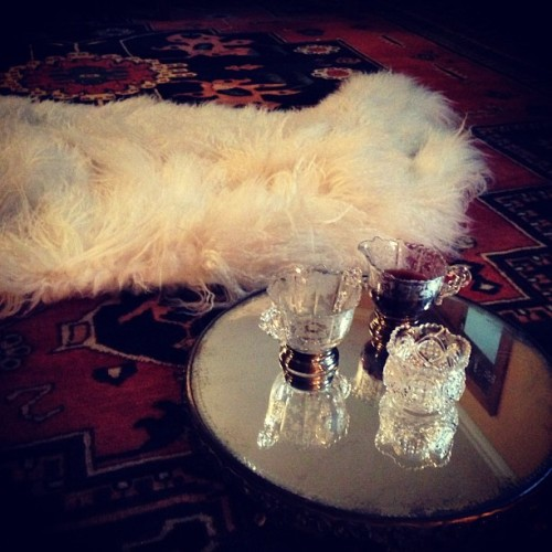 Little cocktail and fur on set