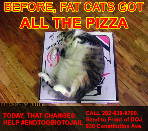 HELP MEMBERS OF THE PURRLETARIAT EAT WHILE CAMPING OUTSIDE THE DEPARTMENT OF JUSTICE: CALL 202-639-8700 for delivery to 930 Constitution Avenue Northwest, Washington D.C. 20004 THE FRONT of the Department of Justice, or order online(STORE #4336):  https://order.dominos.com/en/pages/order/?locations=1#/locations/ Share on facebook