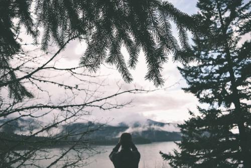 ingelnook:  #533 by -HannahKemp on Flickr.