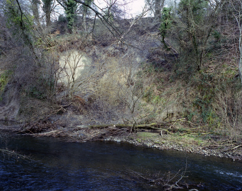 The River Goyt, April, 2013.