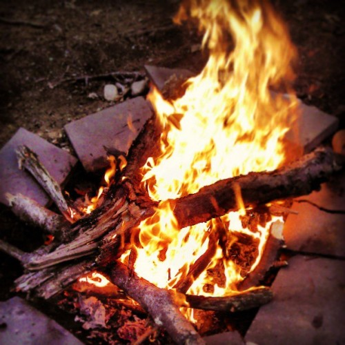 Campfire while camping on an island in the Charles
