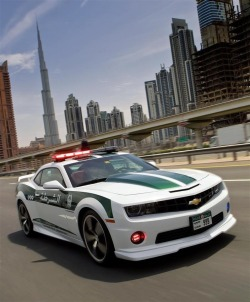 faggotcatholic:  The Dubai police know what's up.