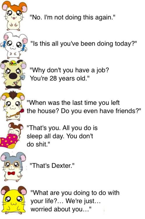 """""""That's Dexter.""""xD"""