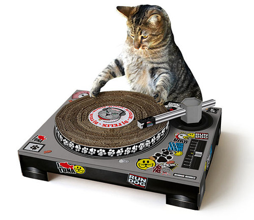 Easily the best product in our Secret Santa Gift Guide: the Cat Scratch DJ from ThinkGeek.