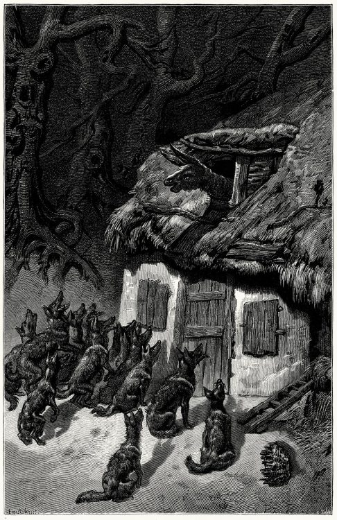 oldbookillustrations:  The wolves and the sick ass. Ernest Griset, from Æsop's fables, with text based chiefly upon Croxall, La Fontaine and L'Estrange, London, New York, 1869. (Source: archive.org)