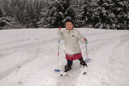 The littlest skier.