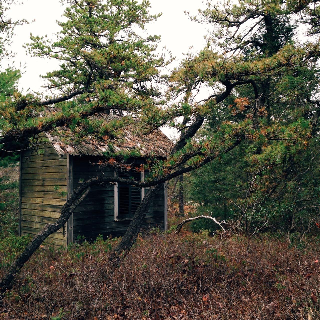 Minnewaska State Park IPhone 5