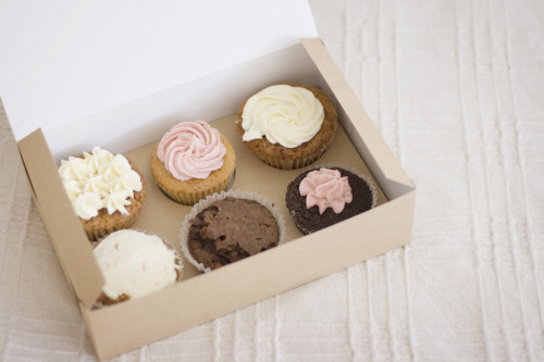 twistytwirls:  Cupcakes (by IvaYaneva)   Cute