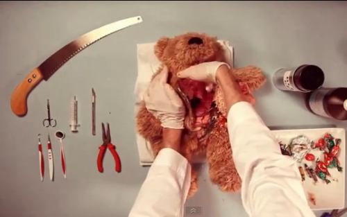 Video: Teddy Operation [Click to watch] Gonna be a long road of rehab before playtime again.
