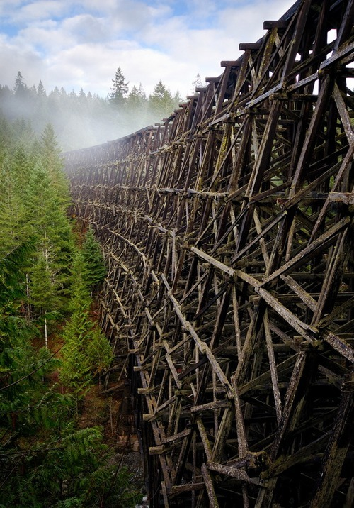 The Kinsol trestle in Vancouver island, Canada. It has been abandoned since 1979.  By Bryn Tassel