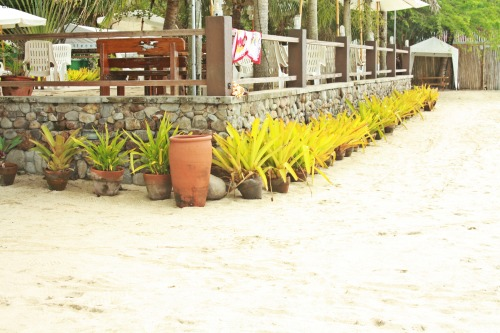 Laiya Aplaya beach front. You be the judge. (I judged already.)