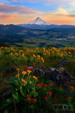 wnderlst:  Oregon, USA