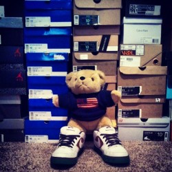 Sir Teddy Trapscelot is a #sneakerhead.