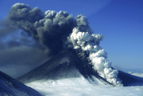 luneprism:  Ash clouds rise from the erupting Pavlof Volcano in Alaska last Thursday