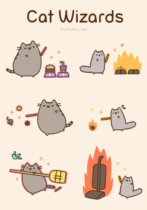RT @500ThingsMyCatT: cat wizards ! http://t.co/qTRCdzF3IQ