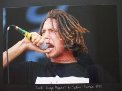 thrash-and-destroy:  zack de la rocha