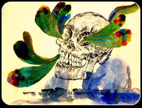 Moleskine Drawing a Day Project Day 9: Crazy Skull on Dots Unipins .1 and .3 and watercolors  by: Andy Besa
