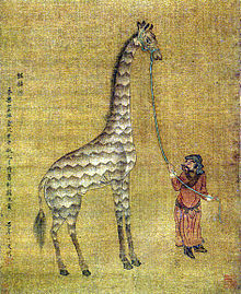"theoddmentemporium:  Camelopard ""Camelopard was the word for a giraffe in the Middle Ages, inspired by its vaguely camel-like shape and its leopard-like markings."" [Sources: Image: A 15th century depiction of a camelopard 