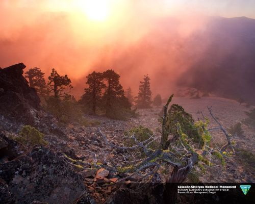 mypubliclands:  The Cascade-Siskiyou National Monument in Oregon was established in recognition of its remarkable ecology and to protect a diverse range of biological, geological, aquatic, archeological, and historic objects. The National Monument is the first monument set aside solely for the preservation of biodiversity. Due to several complex biological and geological factors and processes operating simultaneously, the monument contains an unusually high variety of species in a geographically small area. Photo by Bob Wick