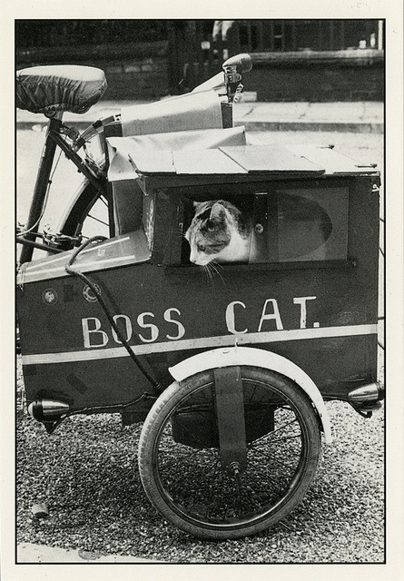 oldtimeycats:  La limousine by the ghost of me on Flickr. Undated postcard.