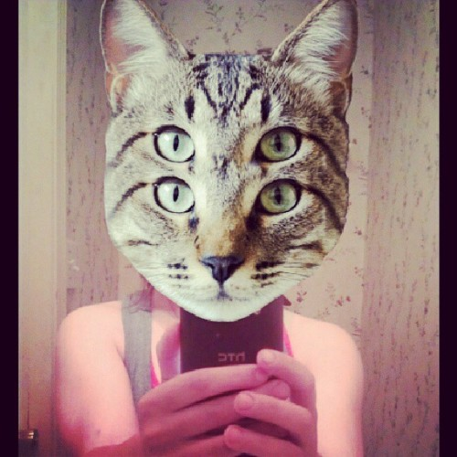 #meow #catwang #cat #myself #lol shut up I just found this app.