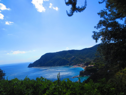 view of monterosso al mare from the hills