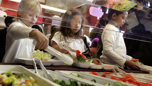 How Farm to School programs are chipping away at childhood obesity These healthy food initiatives emphasize local food consumption, school gardens and food education in school curriculums.