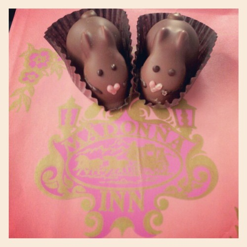 Made a stop at the Madonna Inn and bought 2 chocolate bunny truffles :D #bunny #truffle #candy #chocolate #cute #madonnainn