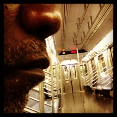 Subway Series  Self Portrait #All Alone #subway  #subwaycar  #train #travel   #iphone #instagram  #transportation #male  #lights  #seat  #selfportrait #nose #lips