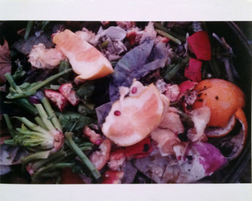 Ryan Foerster, Giant Compost, C-print 50 x 72 inches edition 1/1 + 1 AP, 2011.