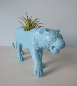 http://www.etsy.com/listing/117773127/upcycled-toy-planter-blue-tiger-with-air?ref=sr_gallery_24&ga_search_query=tiger+planter&ga_view_type=gallery&ga_ship_to=ZZ&ga_search_type=all
