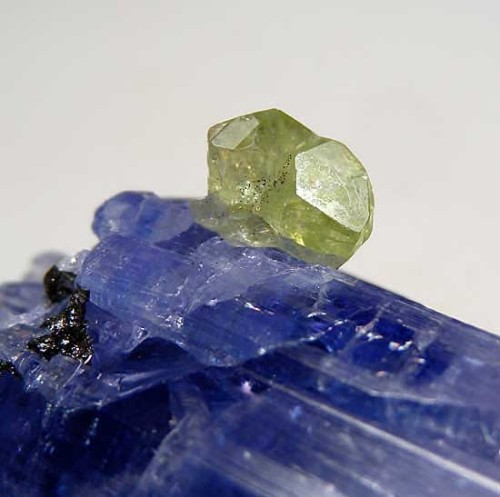 mineralists:  Diopside on Tanzanite with GraphiteMerelani Hills, Tanzania