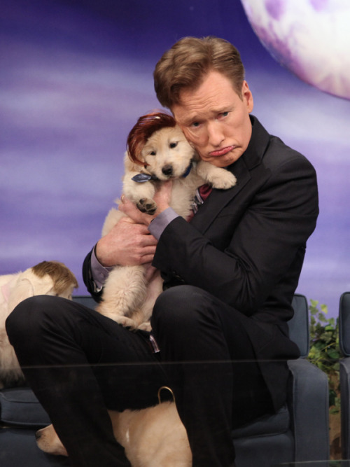 teamcoco:  [VIDEO: Puppy Conan]