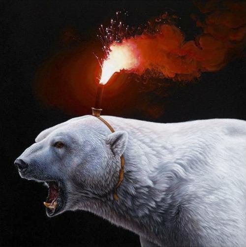nevver:Ice bear, Jacub Gagnon