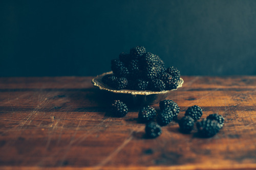 robot-heart:  blackberries (by sage's people)